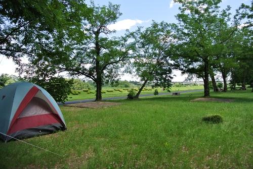 つがスポーツセンター公園キャンプ場_1日目_木立の中の爽やかキャンプ