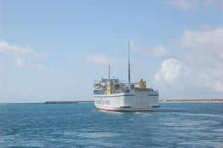 沖縄2010GW_8日目_久米島カラスの襲撃
