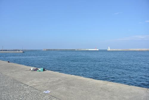 三崎港で釣り