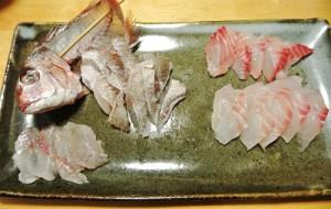 釣魚料理_チダイとメジナの刺身と、ブダイ鍋