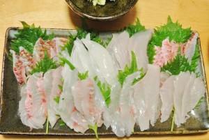 釣魚料理_刺身づくし(イシダイ、オジサン、ウスバハギ、メジナ)と鍋