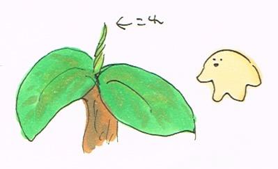 葉っぱの赤ちゃん