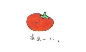 野菜の味の違いの不思議