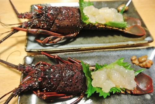 伊勢海老の刺身と卵焼き