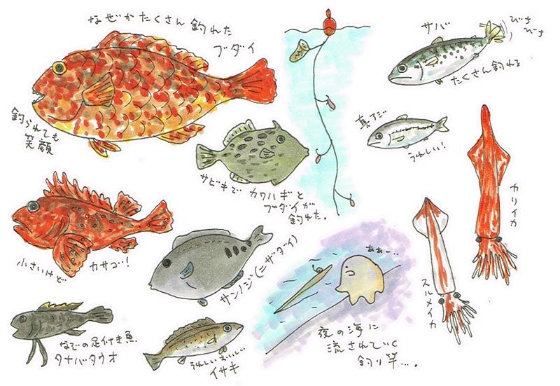 大島2016年7月_1日目_五目釣り大漁