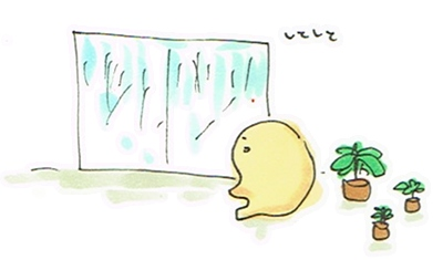 雨すぎる1日