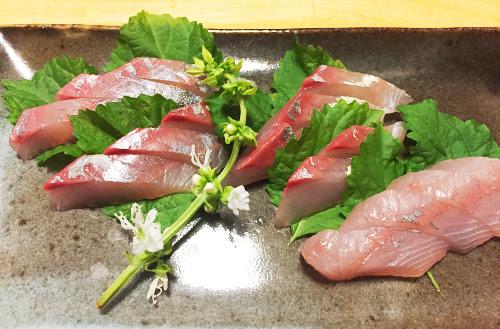 釣魚料理_カンパチの刺身、アラ煮、漬け丼