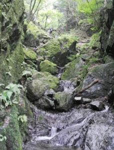 棒ノ嶺(棒ノ折山)_プチ沢登りと雨と靴の崩壊