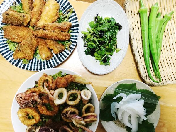 釣魚料理_サバとイカのフライ、イカの刺身、島野菜