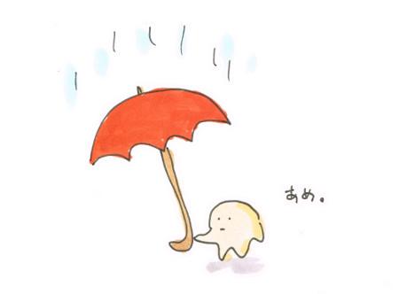 雨の土曜日だ