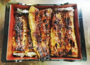 蕨_うなぎ今井_400年の老舗で冬の鰻を食べる!