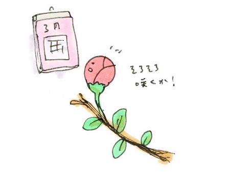 咲く時期とカレンダー