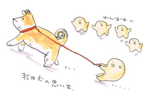 秋田犬の記憶