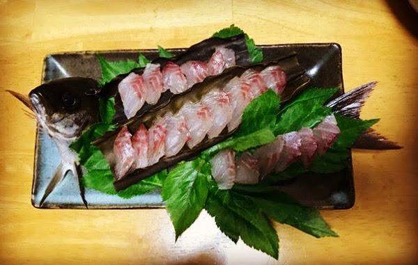 釣魚料理_イサキの刺身
