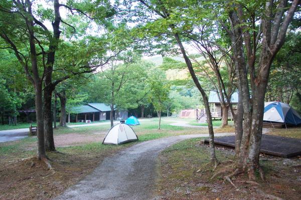 四国漫遊記2018_2日目_2_甫喜ヶ峰森林公園キャンプ場で高知の食材を食べる