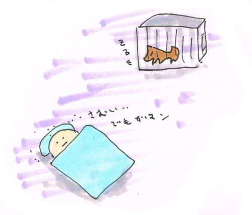 寒い夜だけど