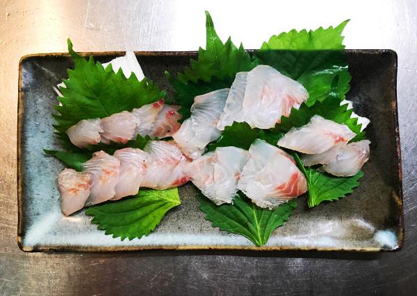 釣魚料理_イサキとイシガキダイの刺身