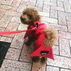 自作!ゴアテックス製犬用レインコート