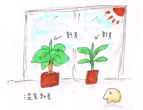 温室効果で成長