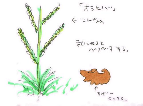 秋になるとベタベタする草