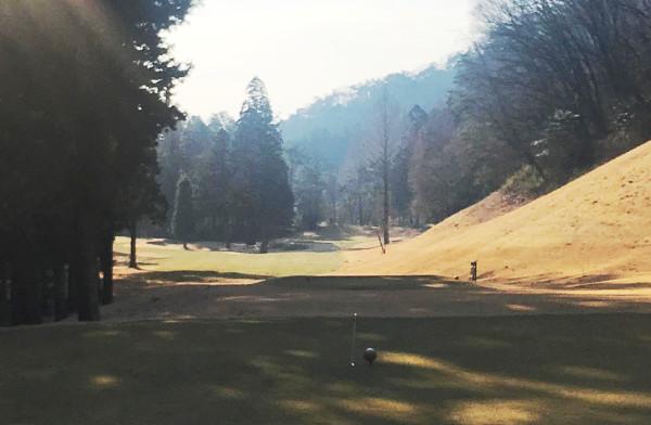 唐沢ゴルフ倶楽部三好コース_スタイミーの木に当たりまくる