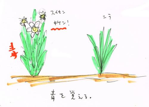 毒のある植物