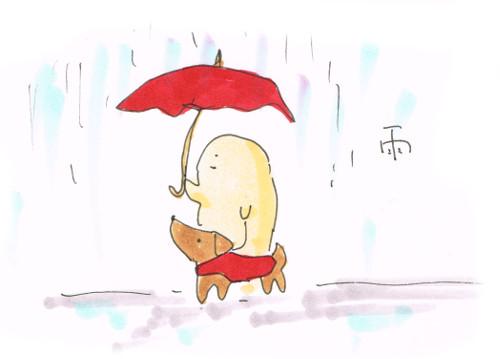 久々の雨さんぽ