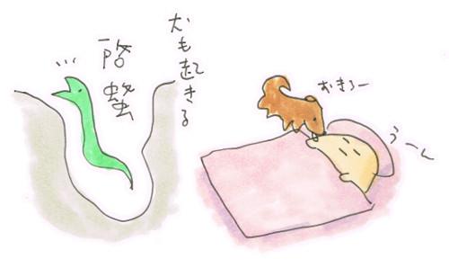 啓蟄と犬の早起き