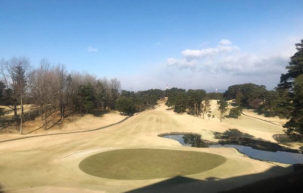 千成ゴルフクラブ_史上最速のグリーンとビック杉