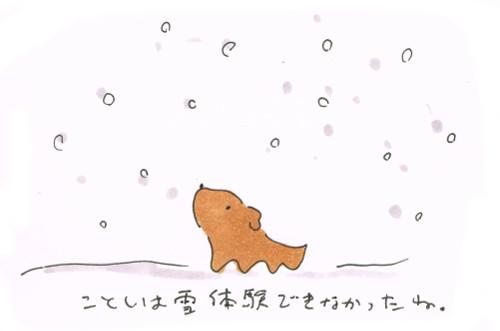 まだ雪が降る