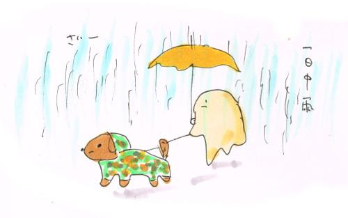 犬のレインコートで雨散歩