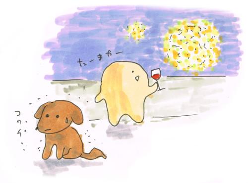 花火大会と犬の感想