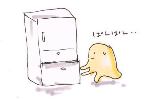 魚の冷凍庫