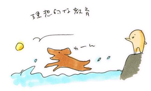 川遊びで水猟犬訓練