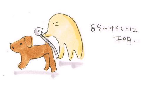 体のサイズ