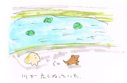 台風翌日の川