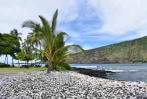 2019年ハワイ_2日目_1_ロブスターを買い、ナポーポーを下り、白砂ビーチに感動