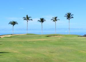 2019年ハワイ_3日目_1_ワイコロアビーチゴルフ ビーチコース