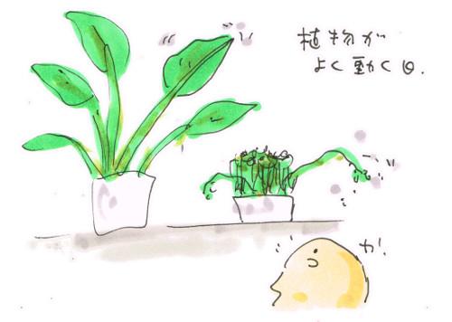 植物が動く日