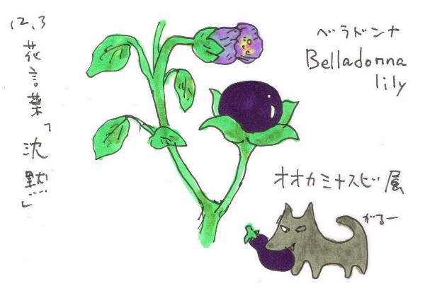 甘い猛毒「ベラドンナ」_12月3日誕生花