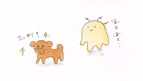 犬だけスッキリ