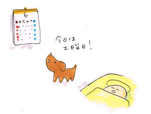 犬の曜日感覚