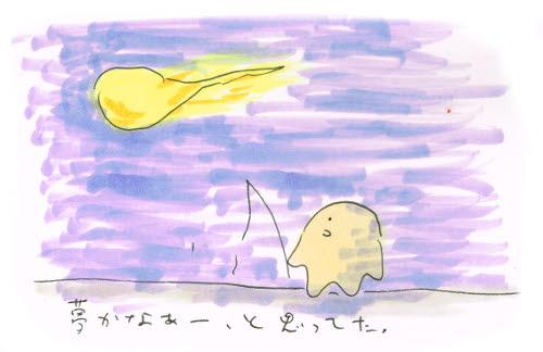 以前見た火球