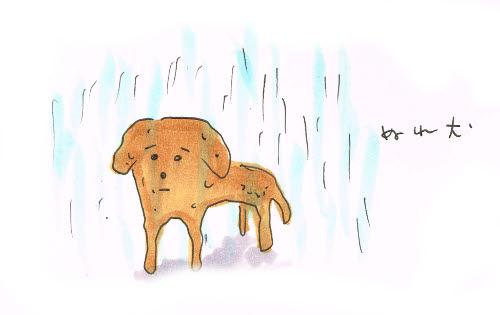 雨に濡らしたくない