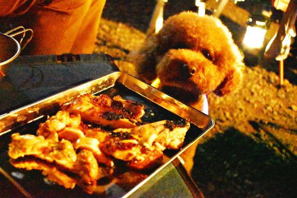 西湖キャンプ2020年_1日目_3_初日の適量晩ご飯
