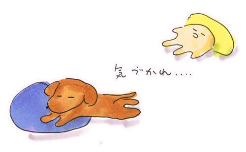 犬的気疲れ