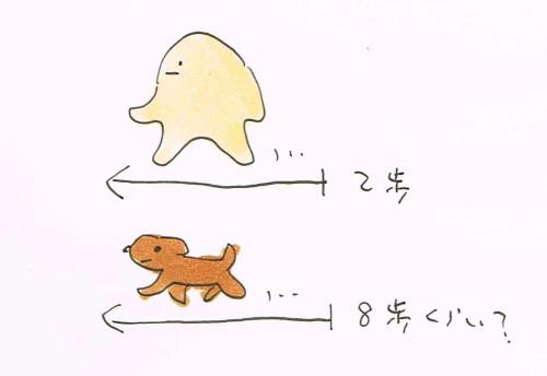 犬の歩数計算