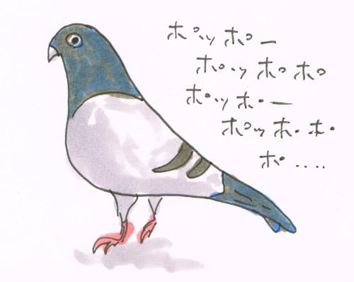 ハトの鳴き声の区切り問題