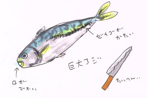 捌く魚の大きさ