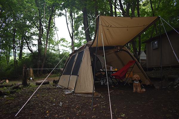 那須キャンプ2021年7月_2日目_1_キャンプ場の朝